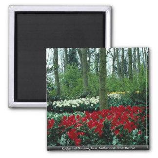 Keukenhof Gardens, Lisse, Netherlands from the For Magnet