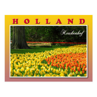 Keukenhof, Lisse, Netherlands Postcards