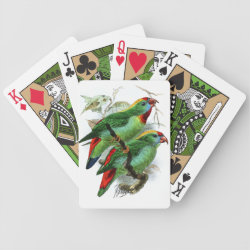Keulemans' Philippine Hanging Parrot Playing Cards
