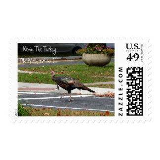 Kevin The Turkey - Old Wethersfield , CT Postage