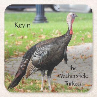 Kevin The Turkey - Old Wethersfield , CT Square Paper Coaster