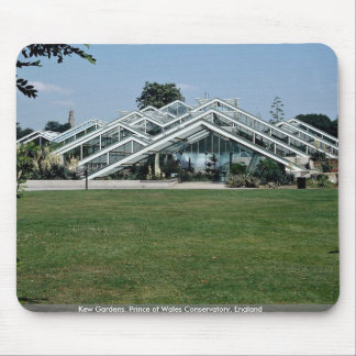 Kew Gardens, Prince of Wales Conservatory, England Mouse Pad