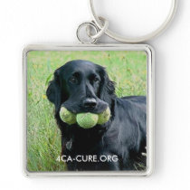 Key Chain 4CA-CURE.ORG