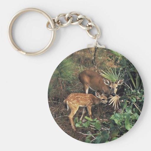 Key Deer Key Chains