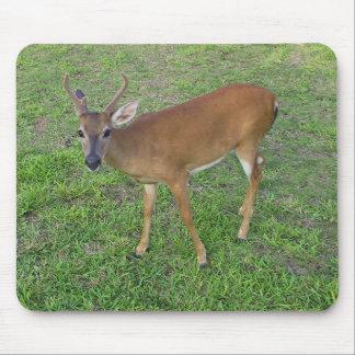 Key Deer Mouse Pad