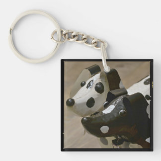 Key for the dogwalker, neighbor, or petsitter keychain