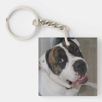 Key-ring has to personalize keychain