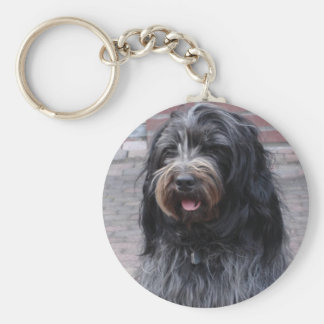 key-ring of schapendoes basic round button keychain