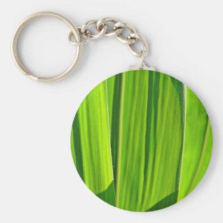 Key supporter green corn sheets keychain