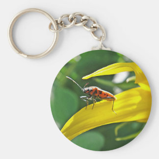 Key supporter of red point beetles keychain