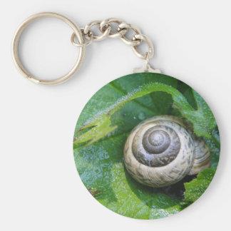 Key supporter pretty snail keychain