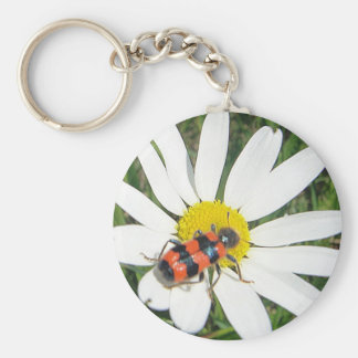 Key supporter red touched beetle keychain