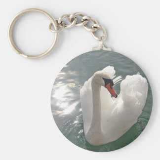 Key supporter swan key chains