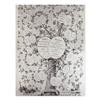Key to Genealogical Tree Postcard
