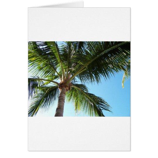 Key West Card