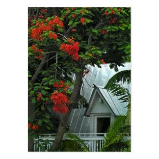 Key West cubre la tarjeta de la foto del ATC Tarjetas Personales