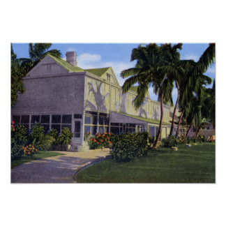 Key West Florida Little White House Print