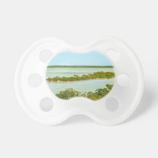 key west florida turquoise water island beaches pacifier