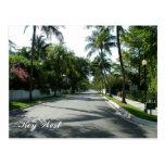 street, palm tree, key, west, florida, residential