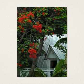 Key West Roof ATC Photo Card
