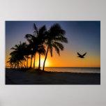 Key West Sunrise Tropical Paradise Poster