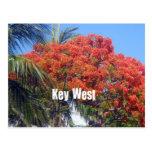 Key West Tarjetas Postales