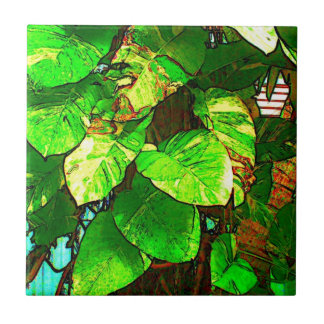 Key West Trees Tile