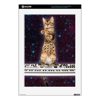 keyboard cat - funny cats  - cat lovers PS3 skins