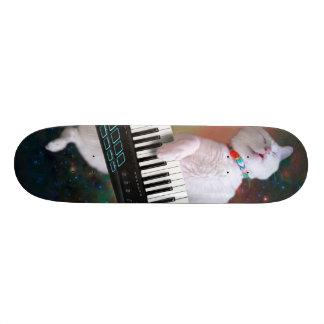 Keyboard cat - space cat - funny cats - galaxy cat skateboard