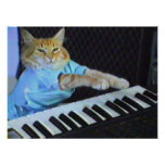 Keyboard Cat Wall Poster!