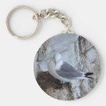 Keychain: Adult Kittiwake Gull