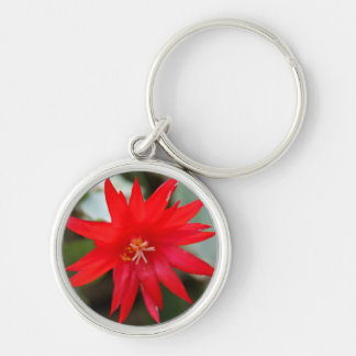 Keychain - Easter Cactus