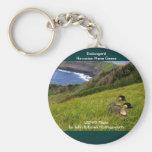 Keychain / Endangered Hawaiian Nene Geese
