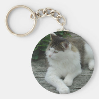 Keychain or Keyring - Maine Coon Cat    Image 1