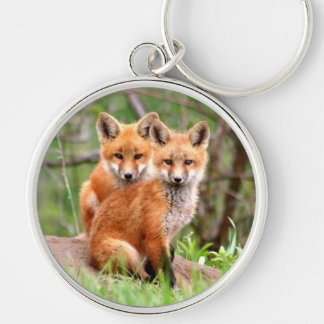 keychain with photo of 2 red fox kits
