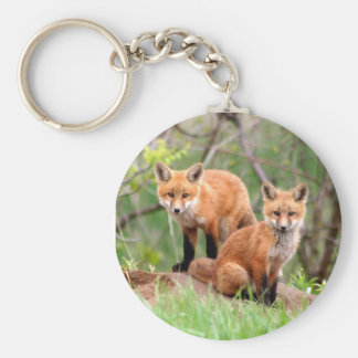 Keychain with photo of red fox kits