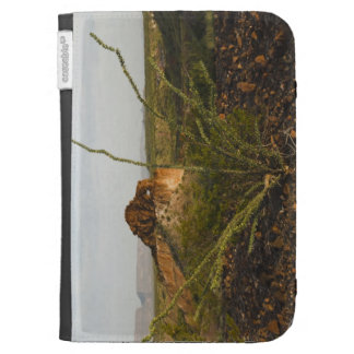 Keyhole rock near Santa Elena Canyon Cases For The Kindle