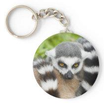 Keyring - Cute Lemur Stripey Tail Basic Round Button Keychain