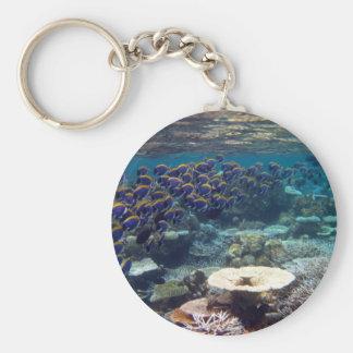 Keyring - Powder Blue Surgeon Fish Basic Round Button Keychain