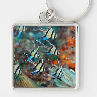keyring with cardinal fish design keychain