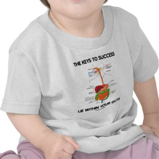 Keys To Success Lie Within Your Guts (Digestive) Tee Shirts