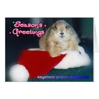 Keystone Christmas products Card