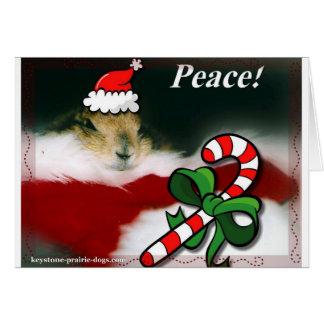 Keystone Prairie Dog Christmas Greeting Card