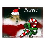 Keystone Prairie Dog Christmas Postcards
