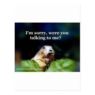 Keystone Prairie Dogs depiction Postcard