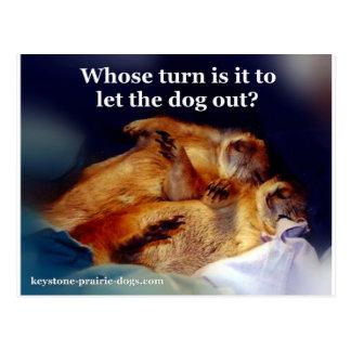 Keystone Prairie Dogs let the dog out meme Postcard