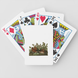 Keywest Doves Card Deck