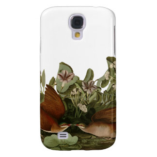 Keywest Doves Galaxy S4 Cases