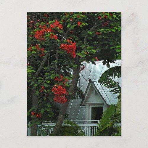 KeyWest Tin Room Post Card postcard