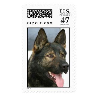 khaki postage stamp